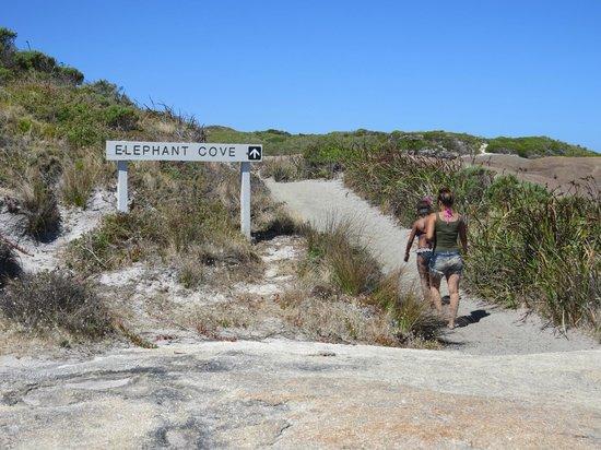 Walking tract to Elephant Rocks