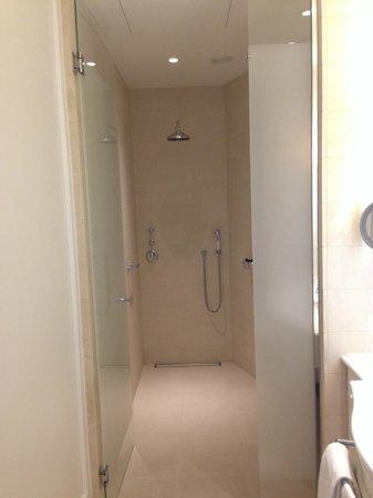 Hotel D'Angleterre: Huge walk in shower