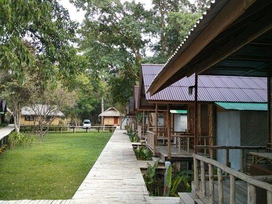 Khao Sok Cabana Resort: Hütten auf Stelzen