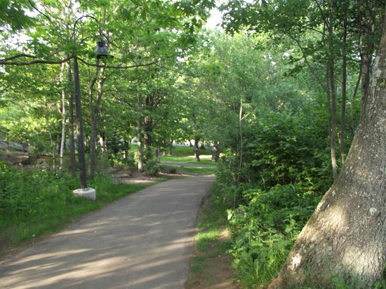 Enger Park and Tower: Shady paved paths