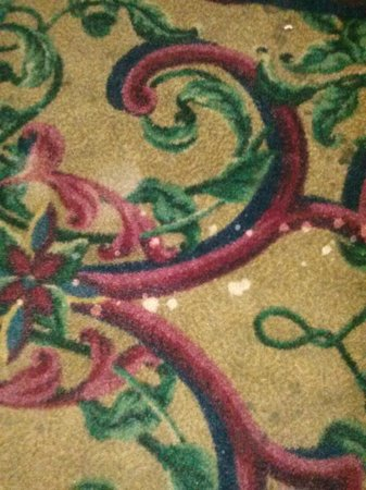 I-Drive Grand Resort & Suites: carpet stained