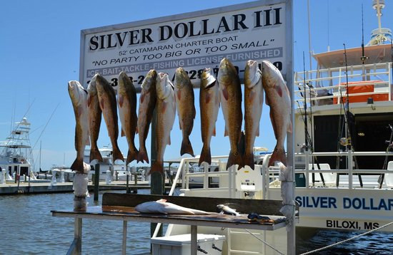 Strictly Business Boat On Saturday Biloxi Charter