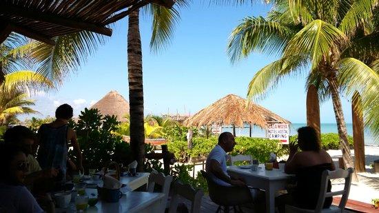 Mandarina Seaside Restaurant by Casa Las Tortugas: veiw from restaurant patio