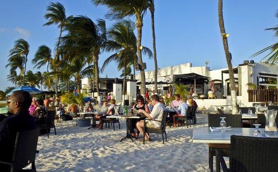 Barefoot On The Beach Aruba Travel Guide