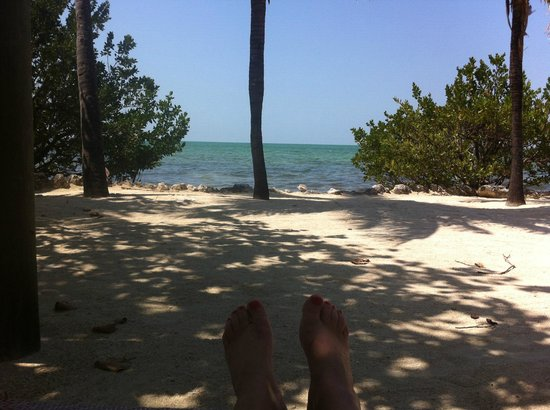 Lime Tree Bay Resort: View from lounge chair in shaded area