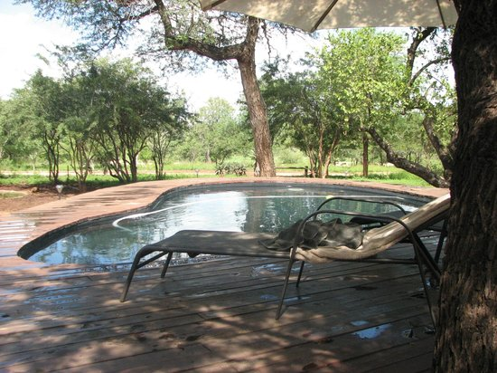 Mvuradona Safari Lodge: Swimming pool with nice view