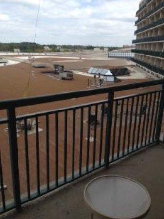 Orlando World Center Marriott: Crap garden view