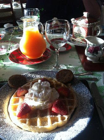 Shamrock Thistle & Crown Bed and Breakfast : Freshly squeezed juice and endless cups of coffee