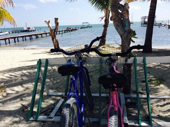 Caye Caulker Towers : Beach Coast