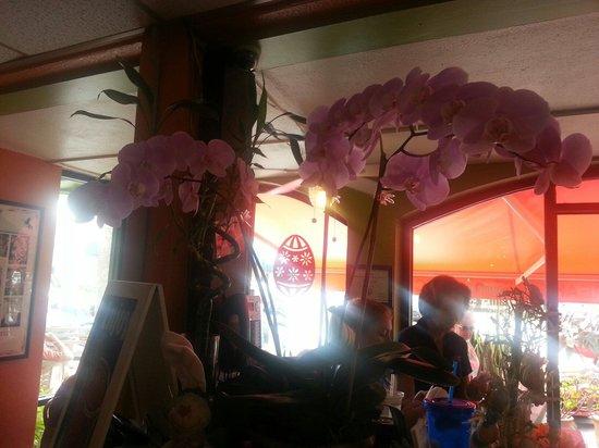 Village Cafe: Nice arrangement of orchids!
