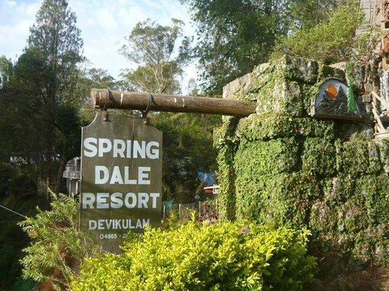 Spring Dale Resort照片