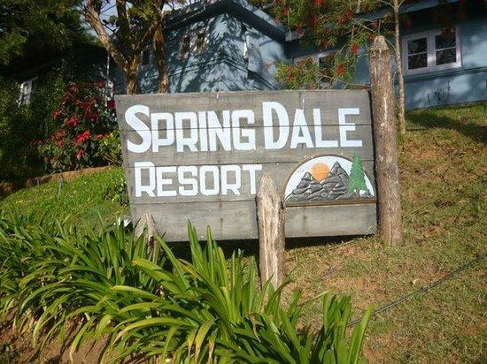 Spring dale resort