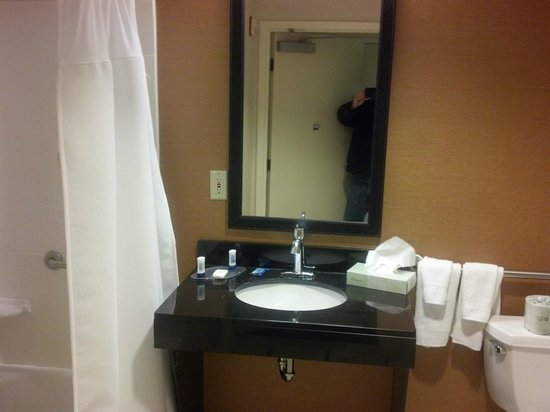Fairfield Inn & Suites Allentown Bethlehem/Lehigh Valley Airport : Bathroom