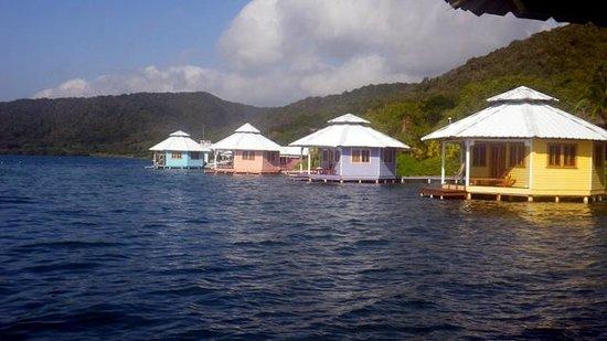 Mango Creek Lodge : view from cabana 5