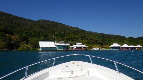 Mango Creek Lodge : arriving to lodge via boat