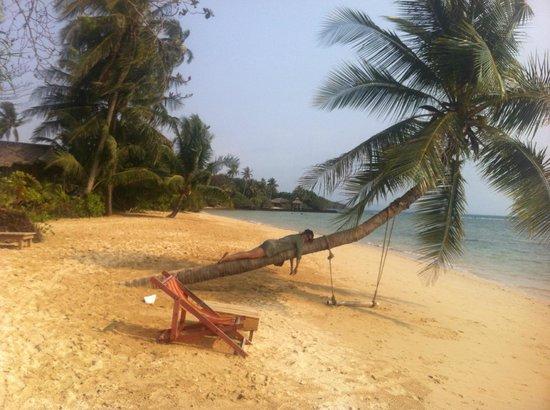 Seavana Beach Resort Koh Mak: playa de la isla