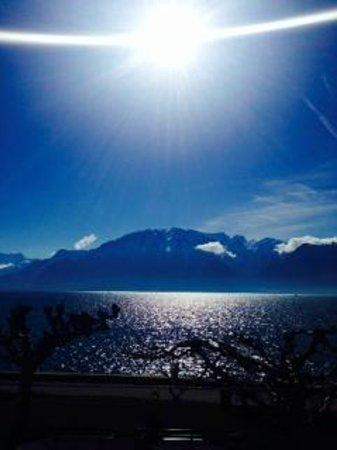 Hotel des Trois Couronnes : lake view