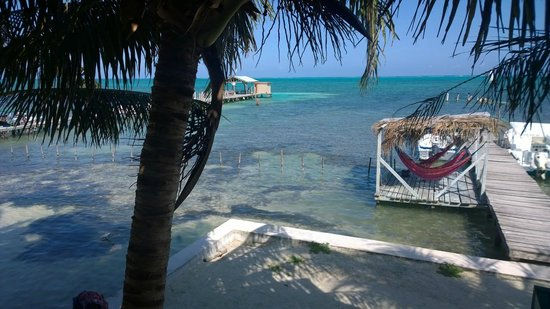 Yuma's House Belize : view from the common area