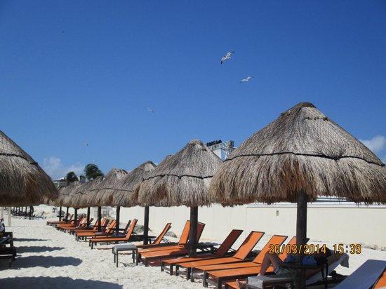 Moon Palace Golf & Spa Resort: Beach