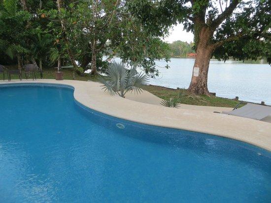 Hotel Manatus: The pool area