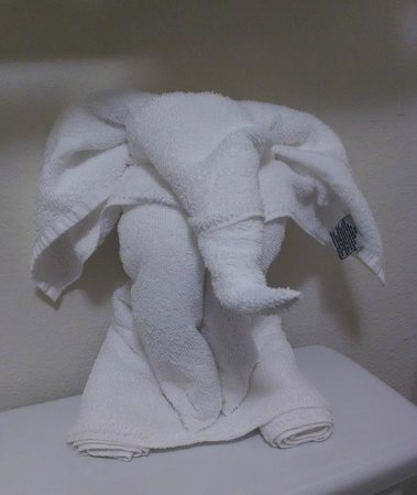 Econo Lodge - Mayo Clinic Area: Towel Origami