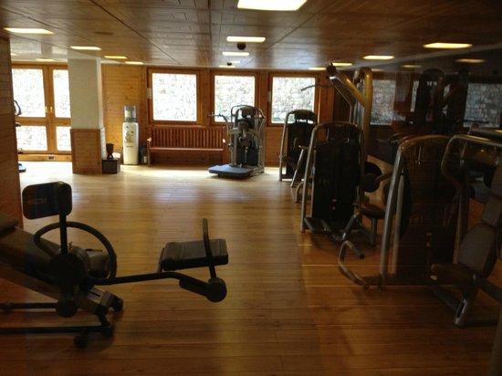 Sport Hotel Hermitage & Spa: Gimnasio