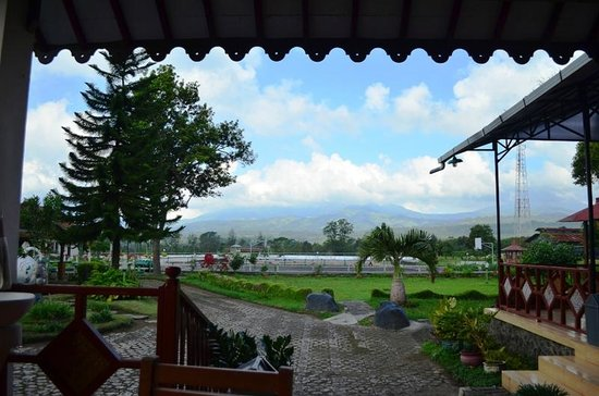 Arabica Homestay: Nice scenery from the restaurant