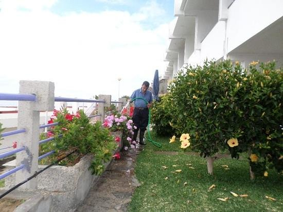Aparthotel Puerto Plata : Looking after the balcony garden.