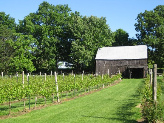 Howe Island B&B: Howe Island Winery at the B&B
