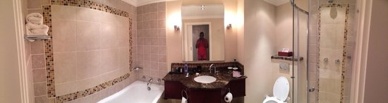AVANI Windhoek Hotel & Casino: WC