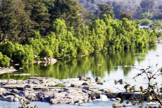 Bundelkhand Riverside: Betwa River