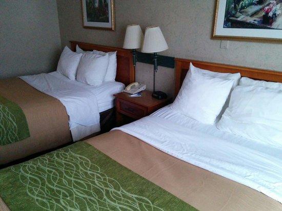 Comfort Inn Dulles International Airport: Bed