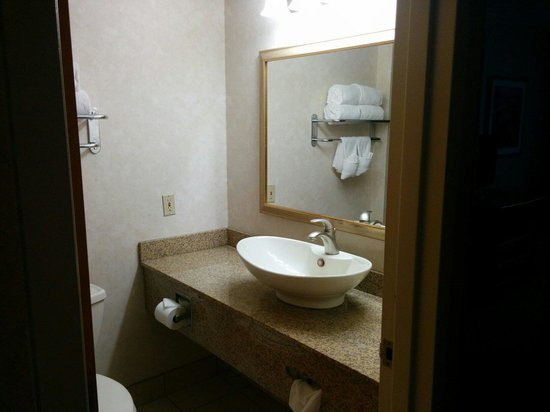 Comfort Inn Dulles International Airport: Massive sink