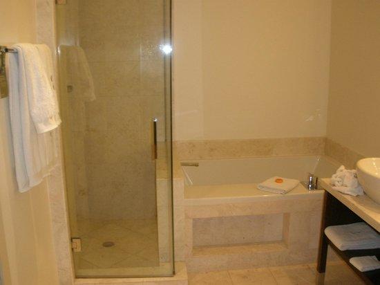 Kimpton EPIC Hotel : Great bathtub and shower.  Very modern