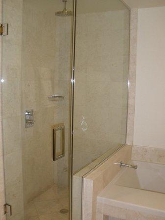 Kimpton EPIC Hotel : Shower with railhead
