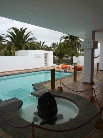 Casa / Museo Cesar Manrique: pool