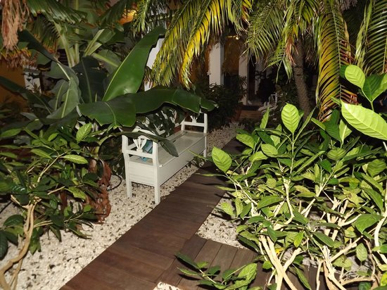 Ocean View Villas, Bonaire: garden