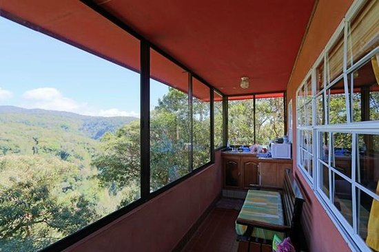 Rainbow Valley Lodge: Sunroom with kithchenette and view of rainforest,
