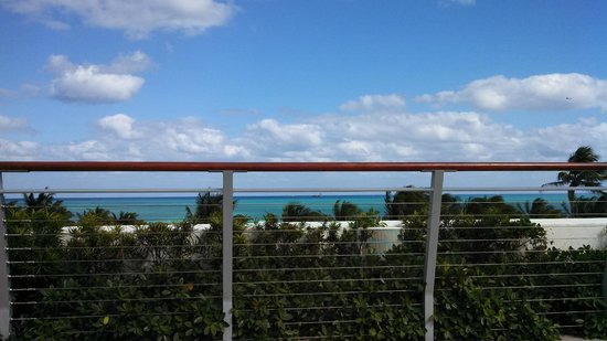 The Betsy - South Beach: Daytime view from the roof deck