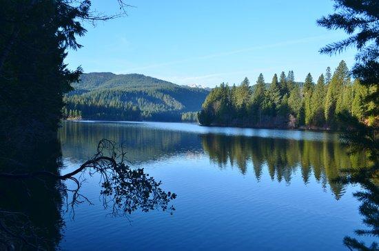 Lake Siskiyou : Early morning smooth as glass