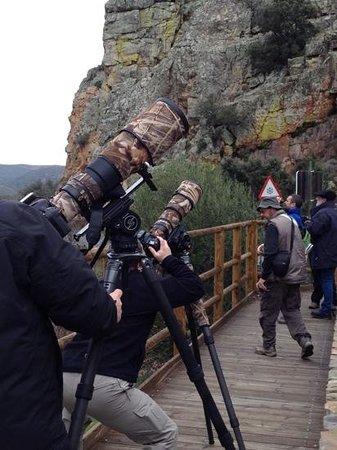 Monfrague National Park: disfrutar de la fotografia