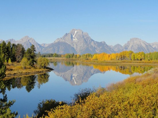 Grizzly Country Wildlife Adventures : Oxbow Bend