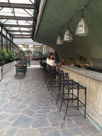 Hotel Manin : Inside open air yard