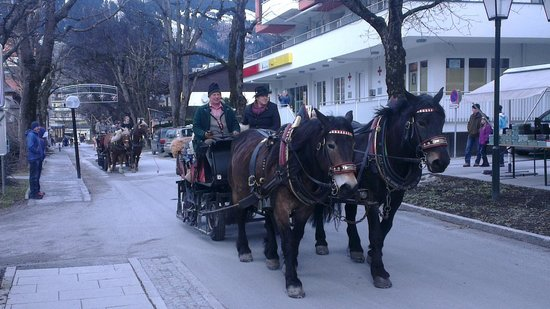 Rauscher: Sleigh ride - but where's the snow gone?