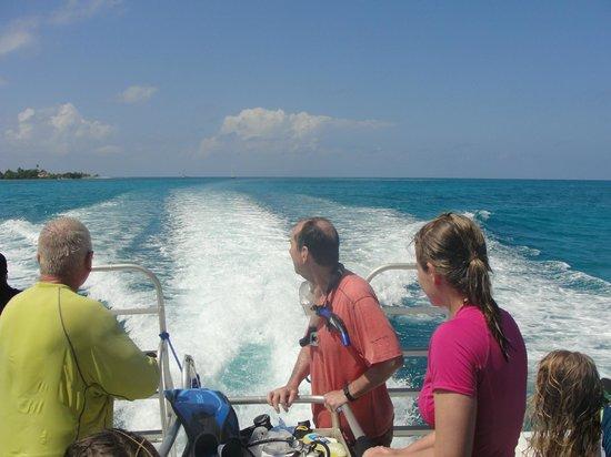 Belize Underwater: Off to lunch