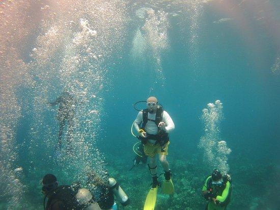 Belize Underwater: Okay
