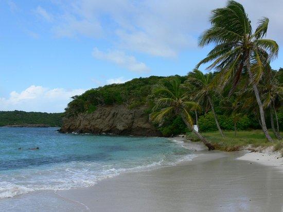 Baradel, Tobago Cays