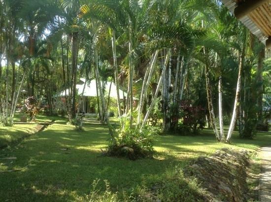 Villas Rio Mar: gardens