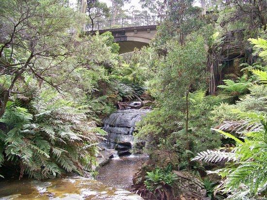 Leura Cascades: The falls