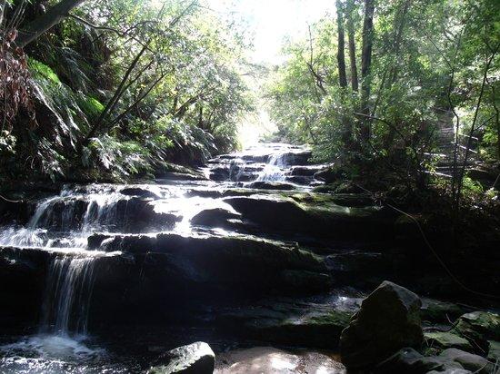 Leura Cascades: The falls leading to the cascades
